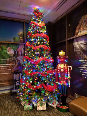 Christmas Tree PACE Center